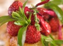 Tarte-fraises-Une